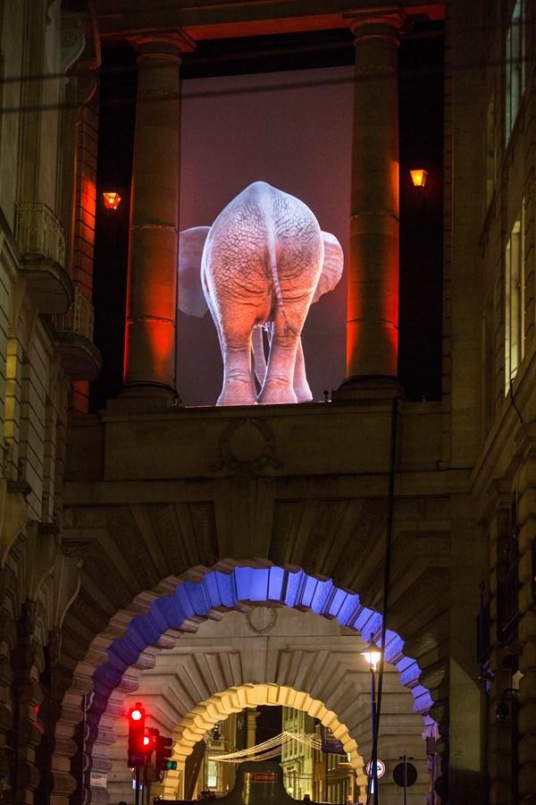 Lạc trong thánh đường ánh sáng ở London - 8