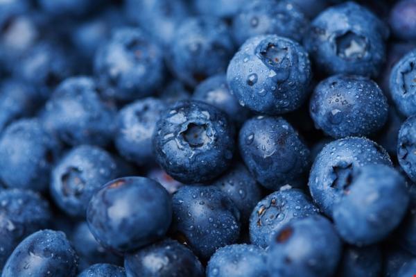 10 thực phẩm thúc đẩy khả năng sáng tạo - 8
