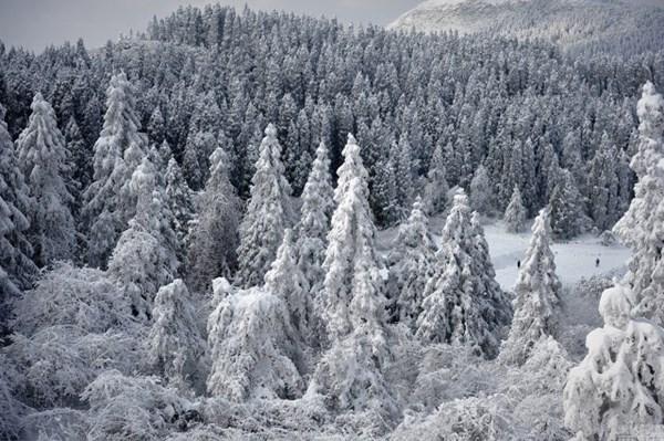 Tuyết phủ trắng xóa, Trung Quốc đẹp như trong phim - 6