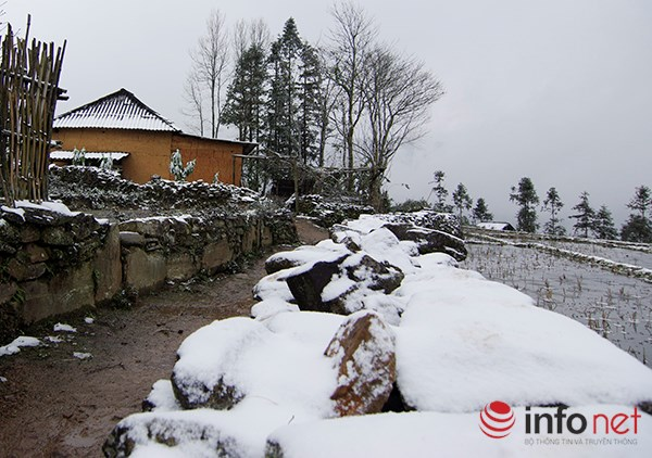 Những cung đường tuyết trên đỉnh núi Lào Cai - 3