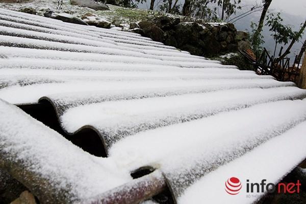 Những cung đường tuyết trên đỉnh núi Lào Cai - 5