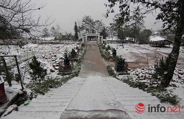 Những cung đường tuyết trên đỉnh núi Lào Cai - 7