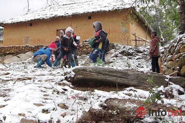 Những cung đường tuyết trên đỉnh núi Lào Cai - 9