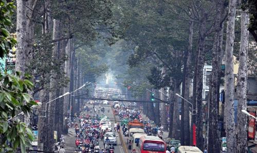 Sài Gòn tháng Chạp se lạnh và xuất hiện sương mù - 1