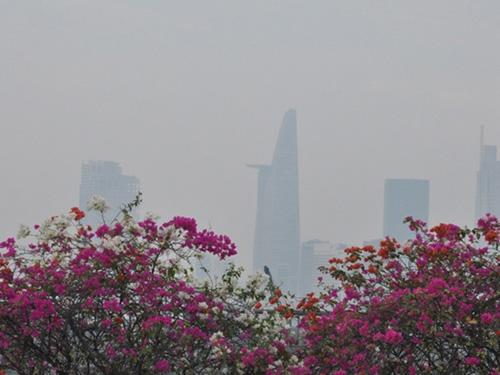 Sài Gòn tháng Chạp se lạnh và xuất hiện sương mù - 2