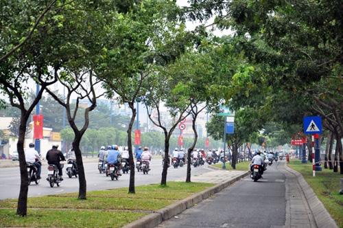 Sài Gòn tháng Chạp se lạnh và xuất hiện sương mù - 6