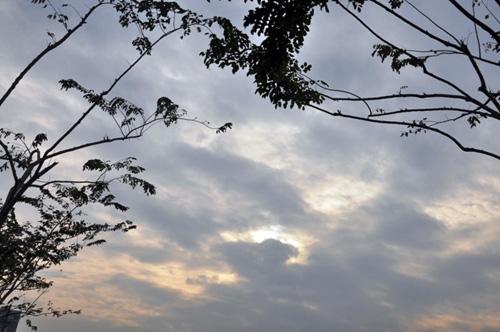 Sài Gòn tháng Chạp se lạnh và xuất hiện sương mù - 7