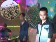 """Video An ninh - Ma túy """"cỏ Mỹ"""" đang hủy hoại giới trẻ Việt như thế nào?"""