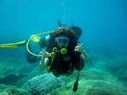 Thể thao - Lặn biển: Môn thể thao hút khách ở Nha Trang