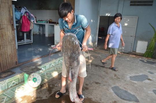 Bắt được cá lăng nặng hơn 40kg trên sông Sêrêpốk - 1