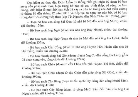 Những nơi ở Sài Gòn có thể bị ngập trong Tết này - 1