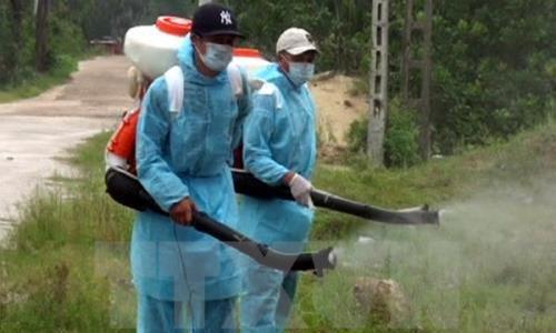 Virus Zika gây teo não có nguy cơ tấn công Việt Nam - 1