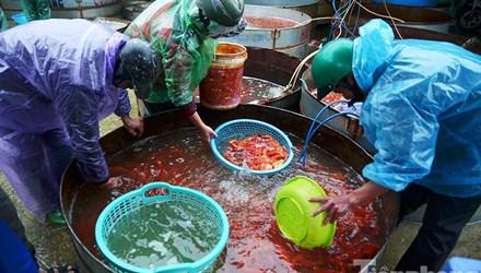 Tấp nập chợ cá ông Công, ông Táo lớn nhất Hà Nội - 1