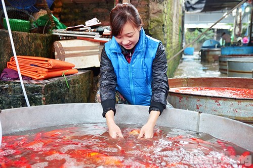 Tấp nập chợ cá ông Công, ông Táo lớn nhất Hà Nội - 4