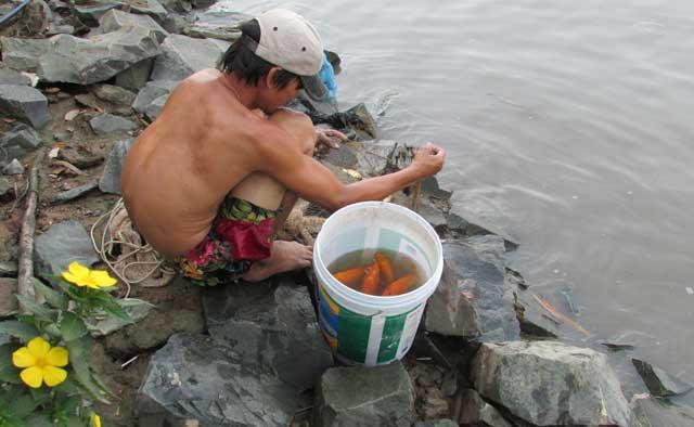 Tiễn ông Táo: Người thả cá phóng sinh, kẻ kéo lưới thu về - 15