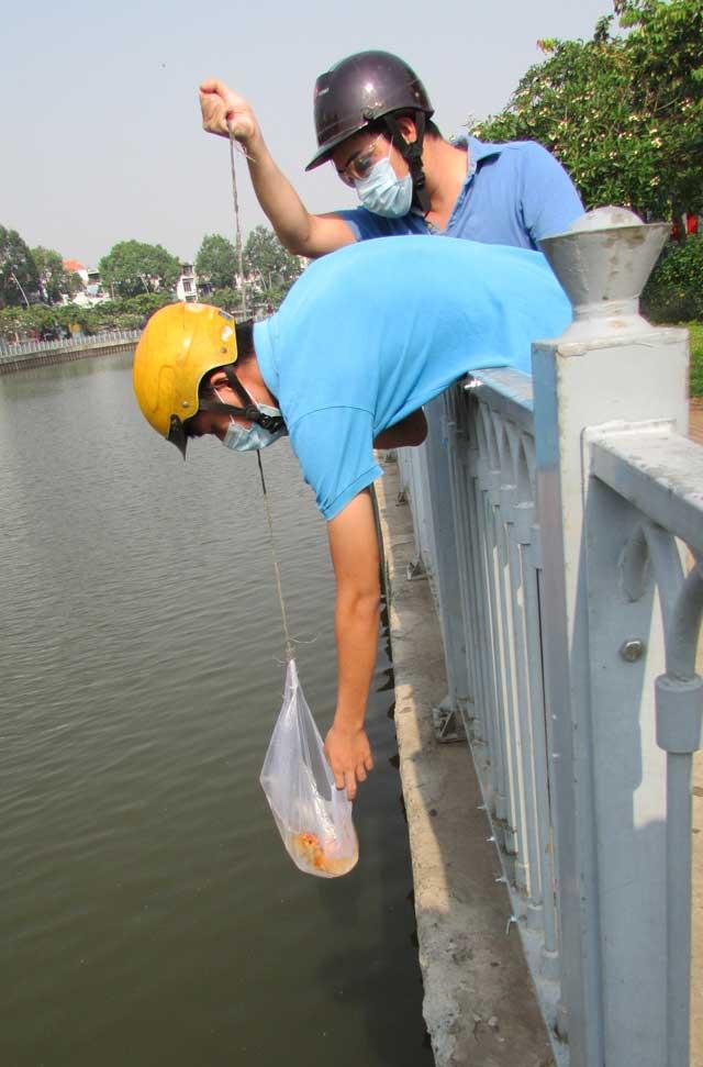 Tiễn ông Táo: Người thả cá phóng sinh, kẻ kéo lưới thu về - 6