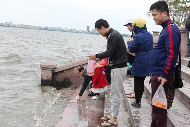 Ra Hồ Tây, cá chép Ông Táo gặp sóng to, gió lớn - 1