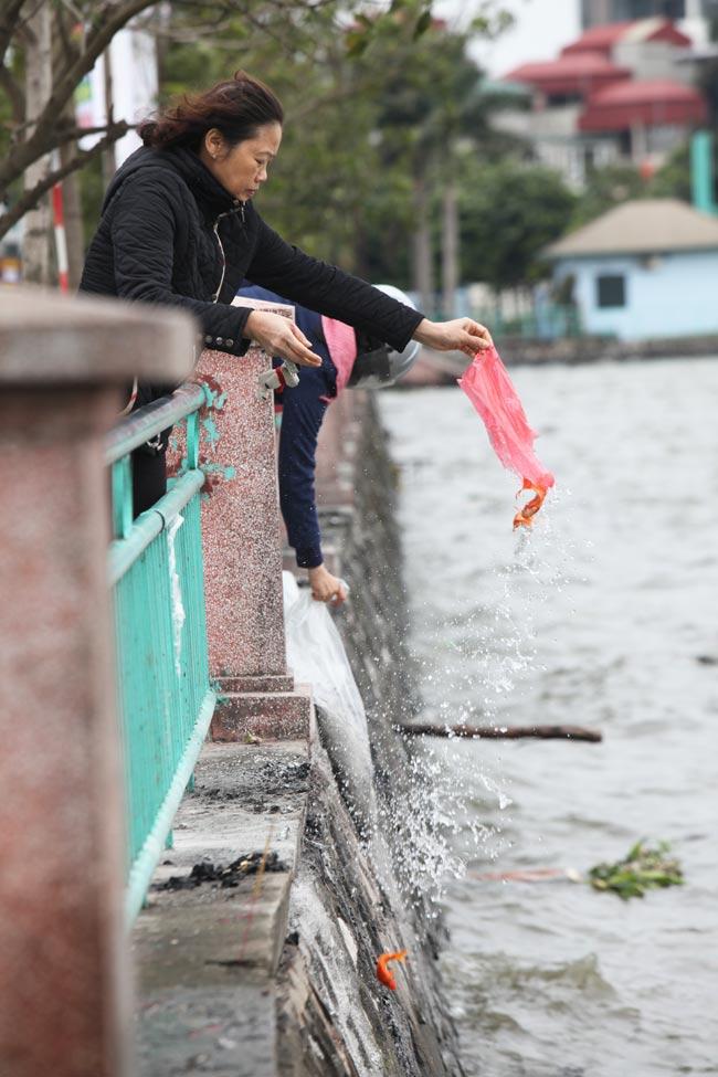Ra Hồ Tây, cá chép Ông Táo gặp sóng to, gió lớn - 7