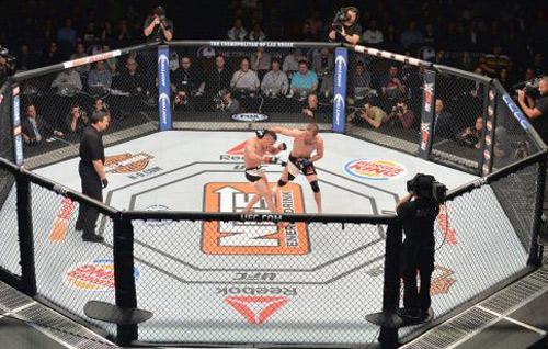 Kinh hãi MMA: Đánh rơi khỏi lồng bát giác - 1