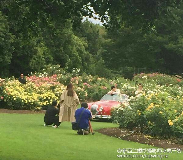 Lộ ảnh cưới lãng mạn của cặp sao 'Bộ bộ kinh tâm' - 9