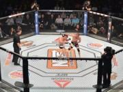 Thể thao - Kinh hãi MMA: Đánh rơi khỏi lồng bát giác