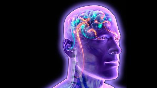Hệ thống máy tính giúp đọc suy nghĩ con người bằng điện não - 1