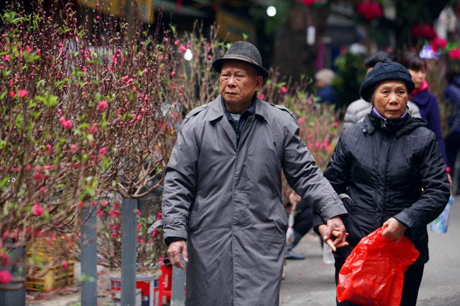 Ảnh: Sắc màu chợ hoa xuân phố cổ ngày cận Tết - 1