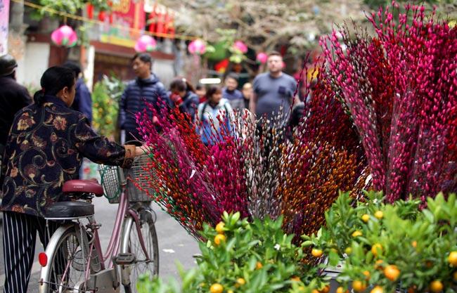 Ảnh: Sắc màu chợ hoa xuân phố cổ ngày cận Tết - 13