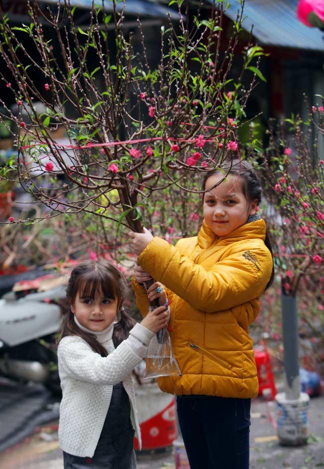 Ảnh: Sắc màu chợ hoa xuân phố cổ ngày cận Tết - 8