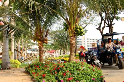 Ngắm cảnh làng quê Việt Nam ở khu nhà giàu - 11