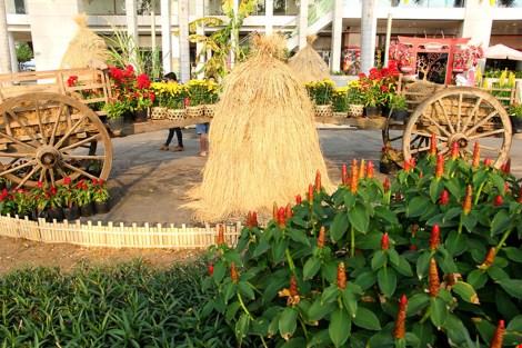 Ngắm cảnh làng quê Việt Nam ở khu nhà giàu - 13