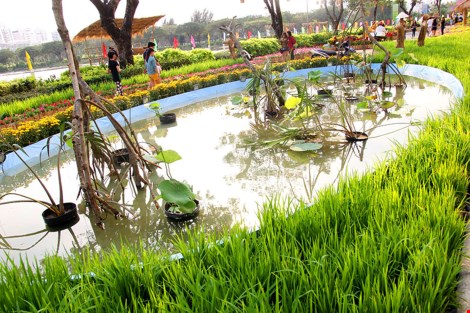 Ngắm cảnh làng quê Việt Nam ở khu nhà giàu - 15
