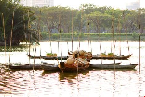Ngắm cảnh làng quê Việt Nam ở khu nhà giàu - 17