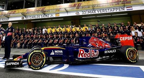 F1 206: Magnussen thay thế Maldonado ở Renault - 1