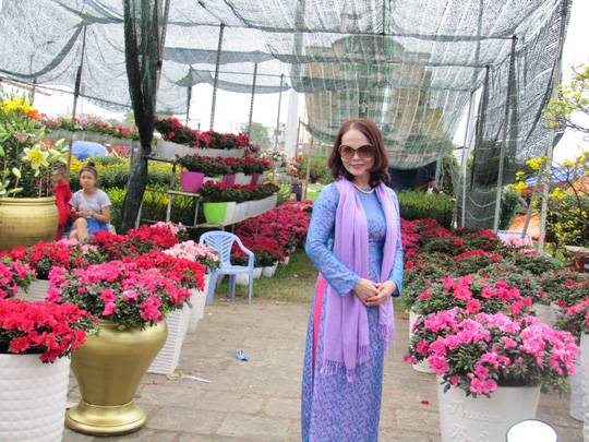 Cây mai cổ rao giá 2 tỉ đồng ở Đà Nẵng - 6