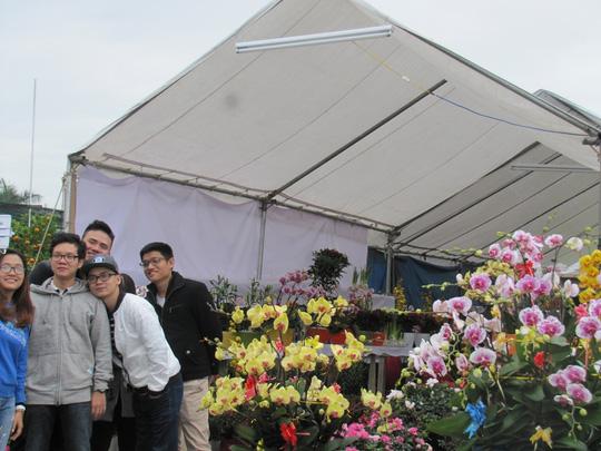 Cây mai cổ rao giá 2 tỉ đồng ở Đà Nẵng - 9