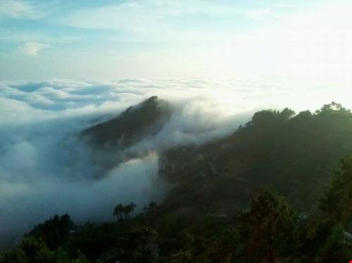 """Tết này lên Tam Đảo """"săn"""" mây - 11"""