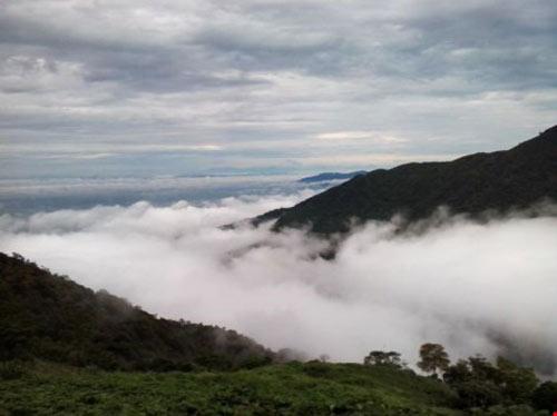 """Tết này lên Tam Đảo """"săn"""" mây - 7"""