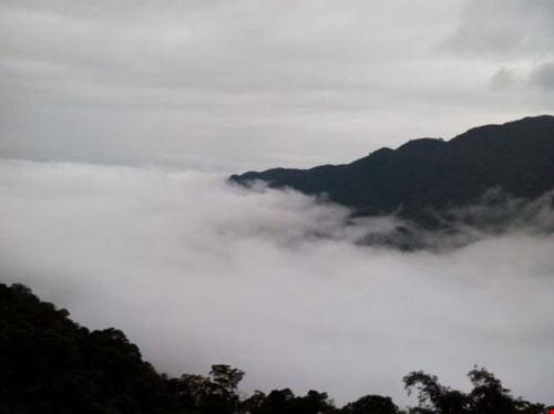 """Tết này lên Tam Đảo """"săn"""" mây - 9"""