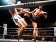 """Giang hồ """"no đòn"""" vì thách đấu võ sĩ Muay Thái"""