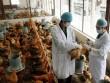 Những dịch cúm gây chết người đang đe dọa Việt Nam