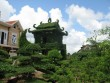 Ngày cuối năm ở làng cây cảnh Vị Khê, Nam Định
