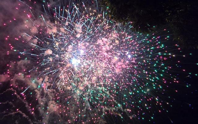 Pháo hoa bung nở rực rỡ đón mừng năm mới - 15