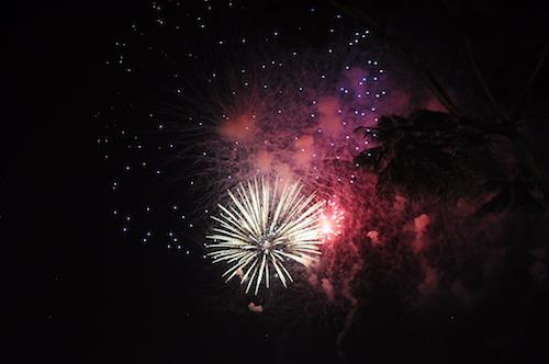 Pháo hoa bung nở rực rỡ đón mừng năm mới - 14