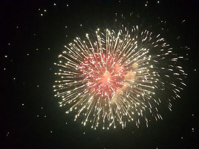 Pháo hoa bung nở rực rỡ đón mừng năm mới - 5