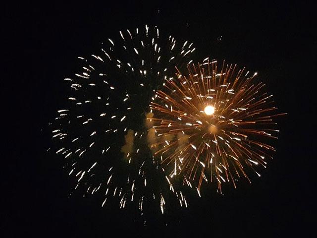 Pháo hoa bung nở rực rỡ đón mừng năm mới - 8
