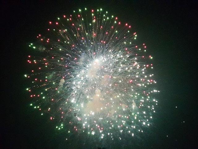 Pháo hoa bung nở rực rỡ đón mừng năm mới - 7