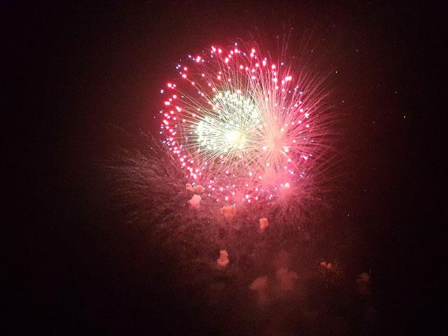 Pháo hoa bung nở rực rỡ đón mừng năm mới - 9