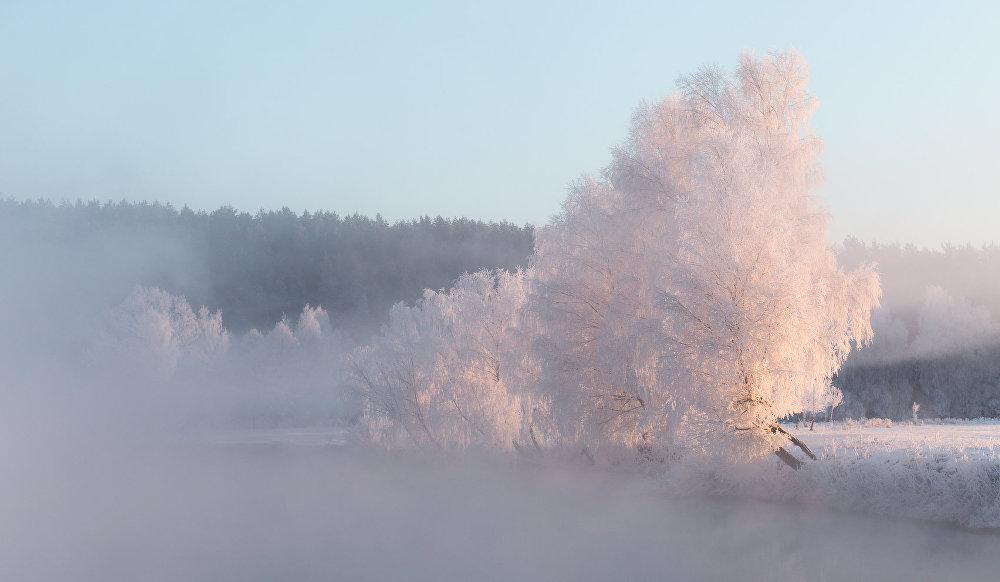 Ảnh: Cảnh tượng mùa đông đẹp như mơ ở Belarus - 2