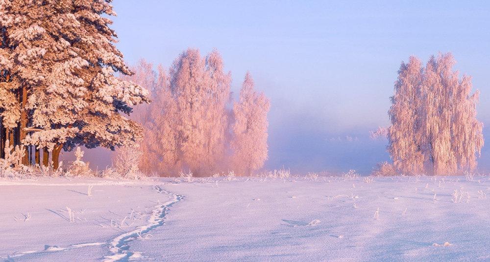 Ảnh: Cảnh tượng mùa đông đẹp như mơ ở Belarus - 3